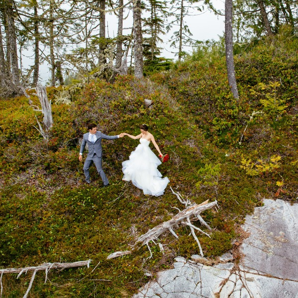 wild wedding