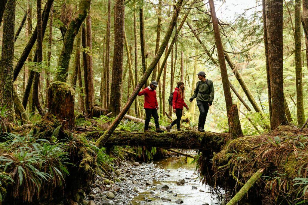 Great Bear Rain Forest Hike