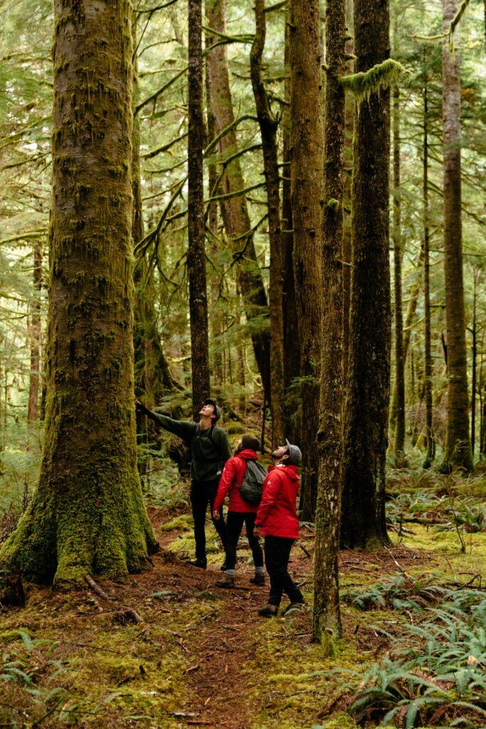 Great Bear Rain Forest Adventure