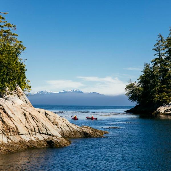 Ocean kayaking adventure | Nimmo Bay